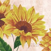 Kaffeservett 3-lagers Sunflower Poem 24x24cm